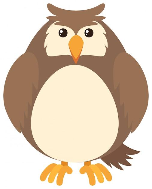 Hibou brun Vecteur gratuit