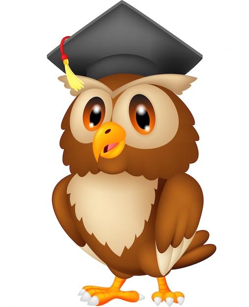 Hibou portant casquette de graduation Vecteur Premium