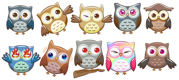 Hibou Vector Set Clipart Vecteur Premium