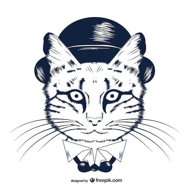 Telecharger le chat du rabbin gratuit