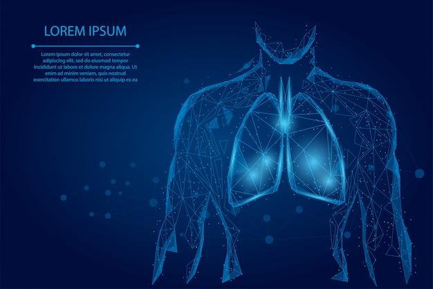 Homme Silhouette Poumons Sains Points Connectés Low Poly Filaire Vecteur Premium
