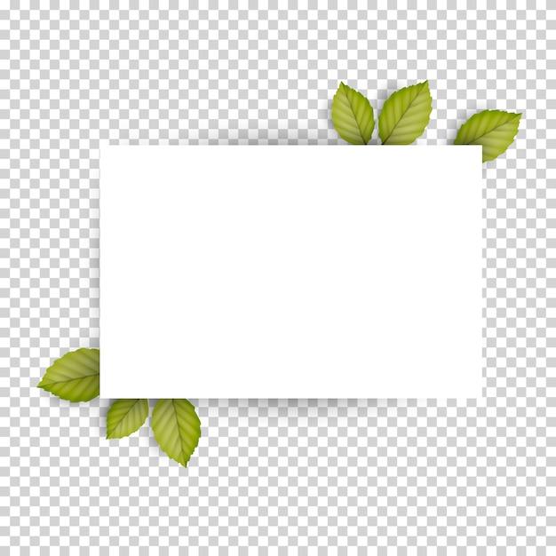 Horizontal blanc feuille blanche et vert frais printemps feuilles Vecteur Premium