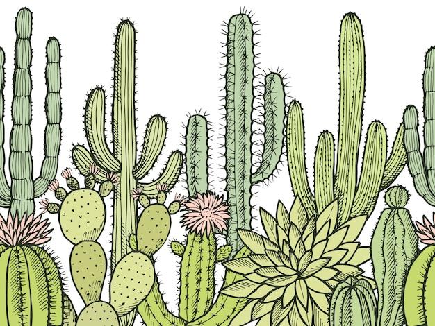 Horizontal modèle sans couture avec des cactus sauvages Vecteur Premium