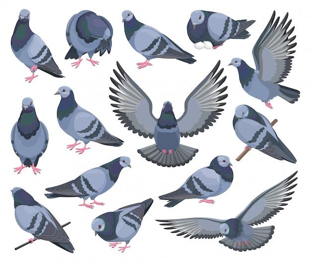 Icône De Jeu De Dessin Animé Isolé Oiseau Colombe. Icônes ...