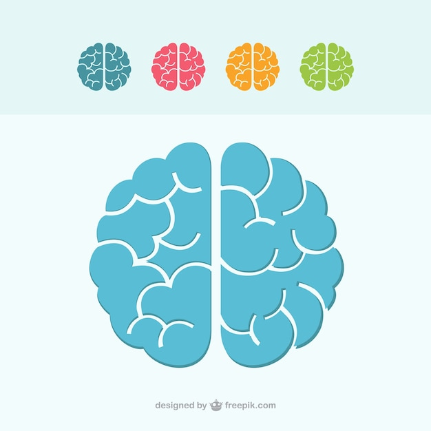 Icônes Cérébrales Colorées Vecteur gratuit