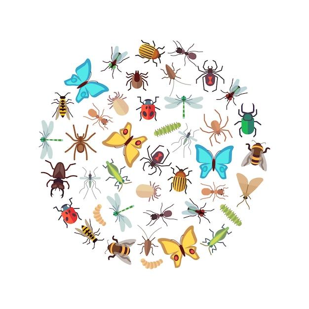 Icônes d'insectes plats ronds concept Vecteur Premium