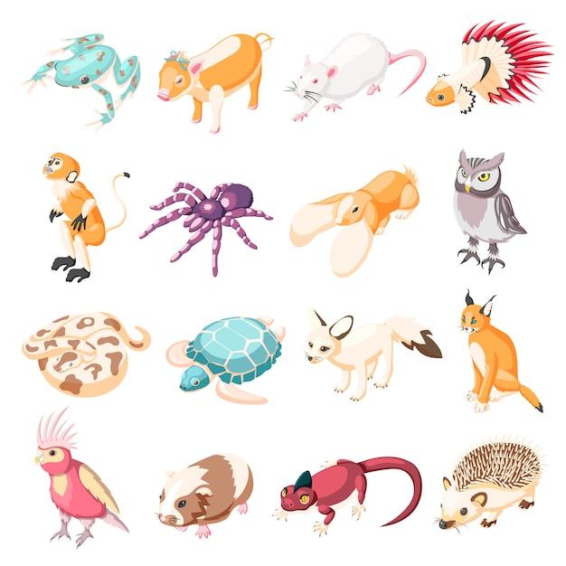 Icônes Isométriques D'animaux Exotiques Vecteur gratuit