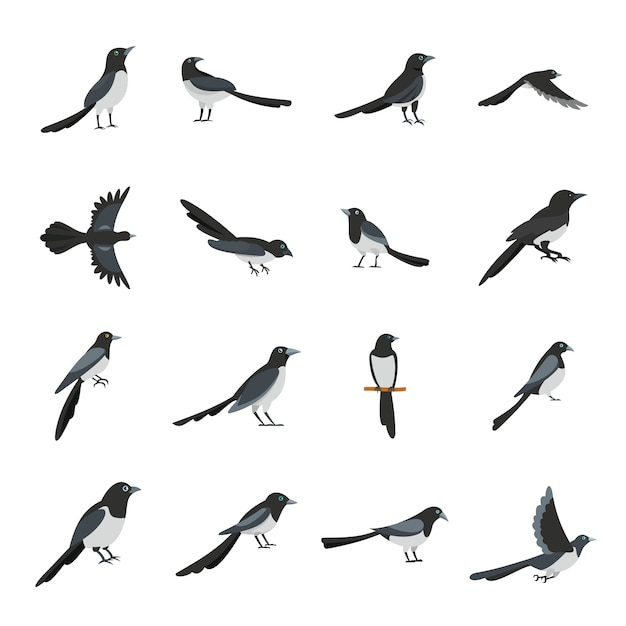 Icônes d'oiseau corneille pie définir style plat Vecteur Premium