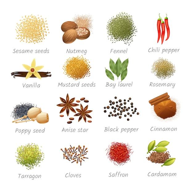 Icônes sertie de titres d'ingrédients alimentaires piquants et d'épices parfumées réalistes Vecteur gratuit