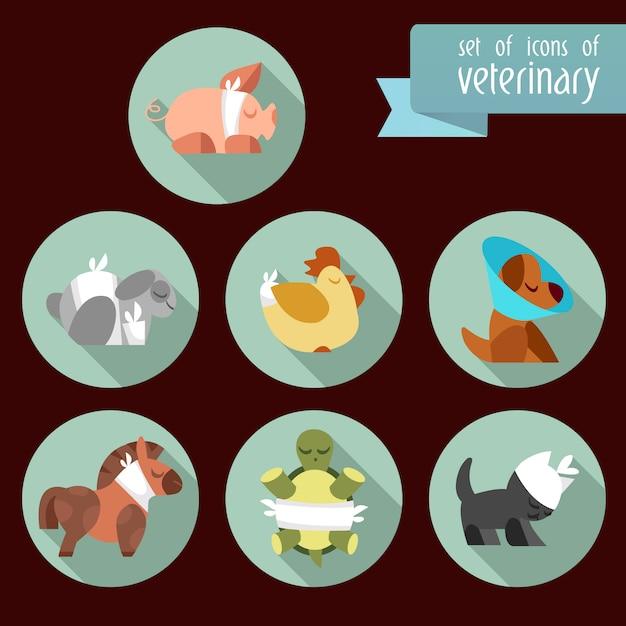 Icônes vétérinaires collectio Vecteur gratuit