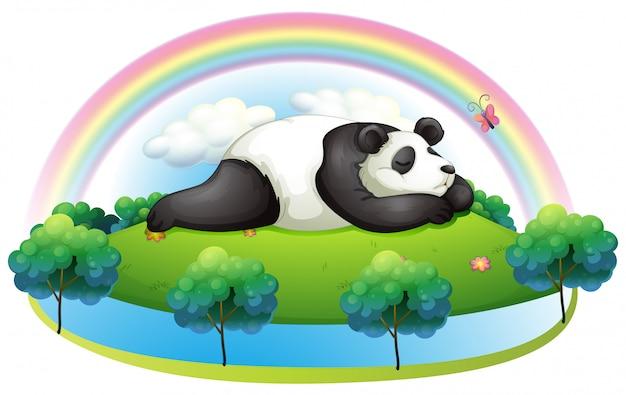 Une île avec un grand panda qui dort Vecteur gratuit