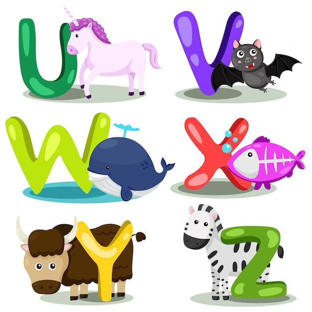 Illustrateur alphabet animal lettre - u, v, w, x, y, z Vecteur Premium