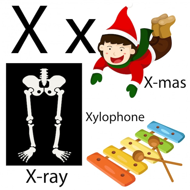 Illustrateur de l'alphabet x Vecteur Premium