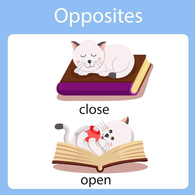 Illustrateur des contraires fermé et ouvert Vecteur Premium