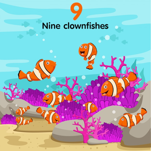 Illustrateur du numéro avec neuf poissons clowns Vecteur Premium