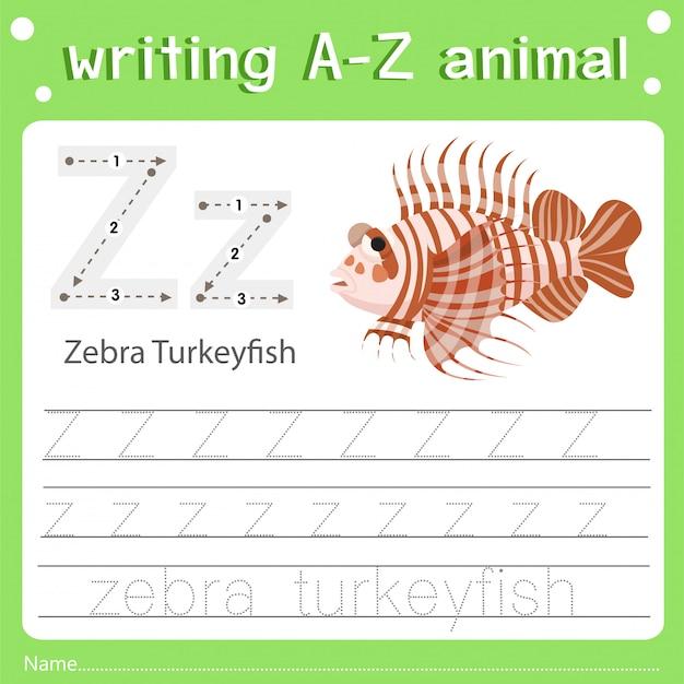 Illustrateur de l'écriture z animal z zèbre dinde Vecteur Premium