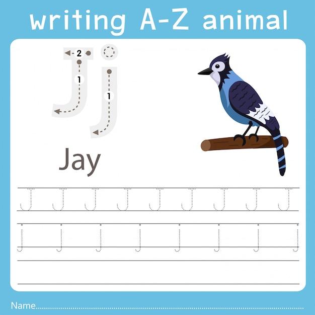 Illustrateur écrivant un animal de jay Vecteur Premium
