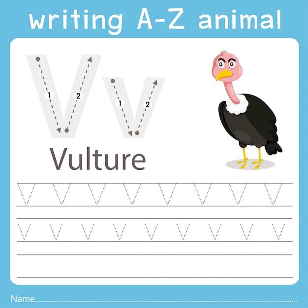 Illustrateur écrivant un animal de vautour Vecteur Premium