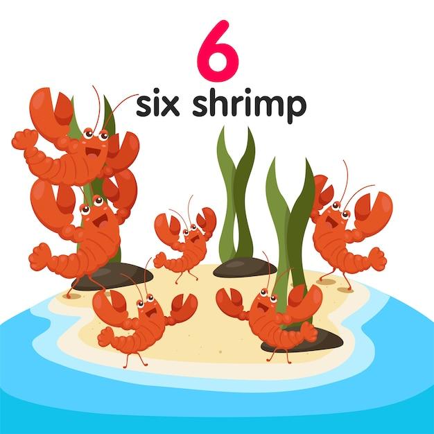 Illustrateur De Six Crevettes Vecteur Premium