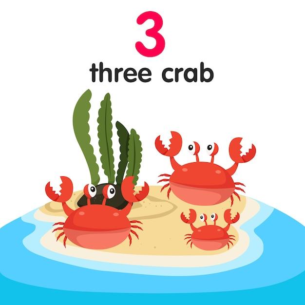 Illustrateur De Trois Crabes Vecteur Premium