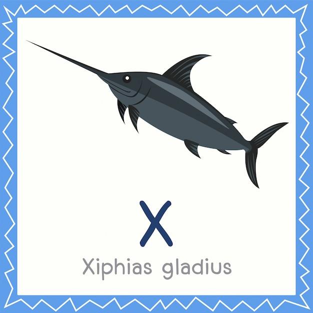Illustrateur de x pour xiphias gladius animal Vecteur Premium