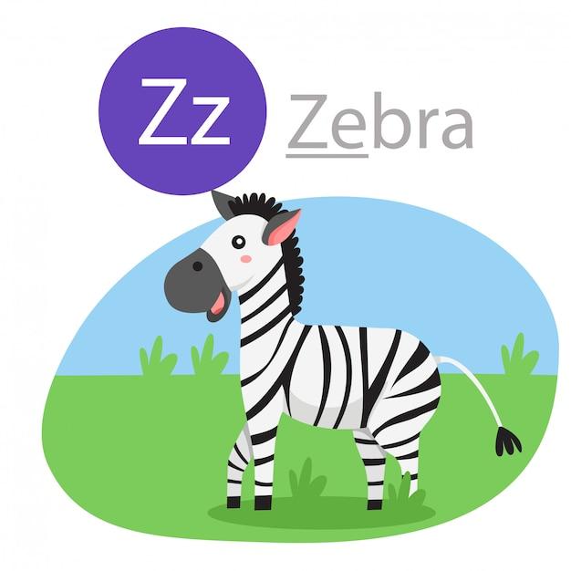 Illustrateur de z pour animal zèbre Vecteur Premium