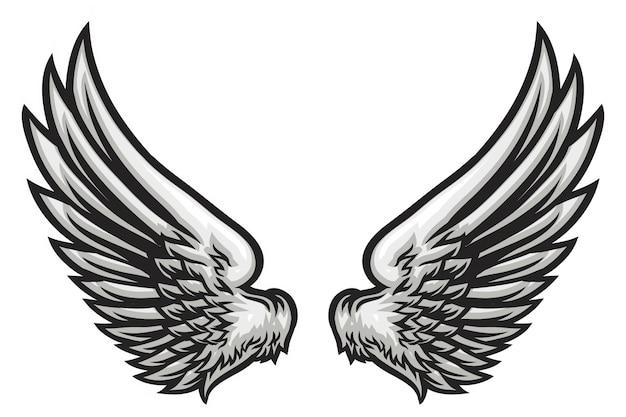 Illustration De L'aile Dessinée à La Main Vecteur Premium