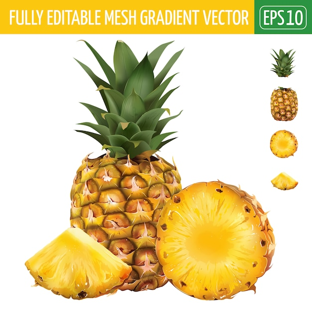 Illustration d'ananas sur blanc Vecteur Premium
