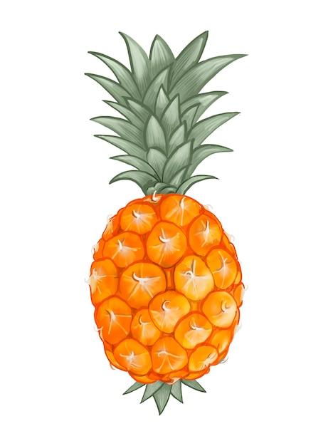 Illustration d'ananas tropical frais entier Vecteur gratuit