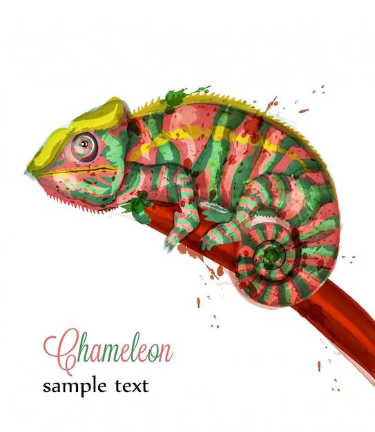 Illustration aquarelle caméléon Vecteur Premium