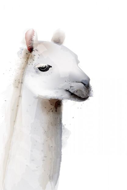 Illustration aquarelle de lama Vecteur Premium