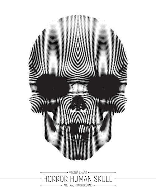 Illustration d'art de crâne d'horreur humaine de vecteur isolé Vecteur Premium