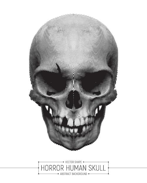 Illustration d'art de crâne d'horreur humaine de vecteur Vecteur Premium