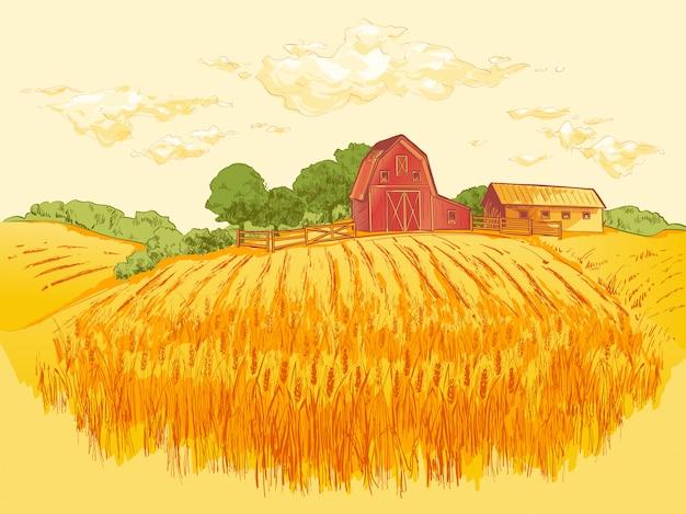 Illustration de blé champ champêtre Vecteur Premium