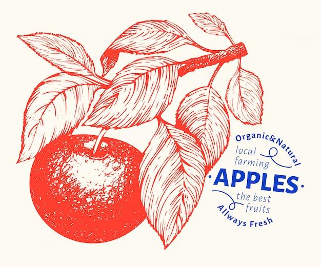Illustration de la branche apple. illustration de fruits jardin vecteur dessiné à la main. fruit de style gravé. illustration botanique vintage. Vecteur Premium