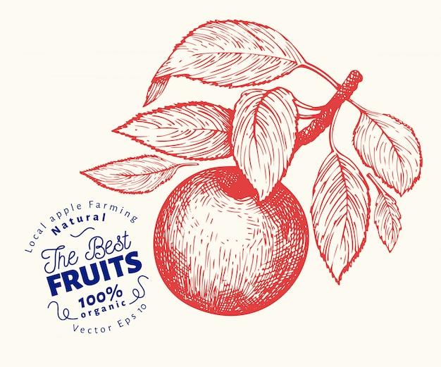 Illustration de la branche apple. Vecteur Premium