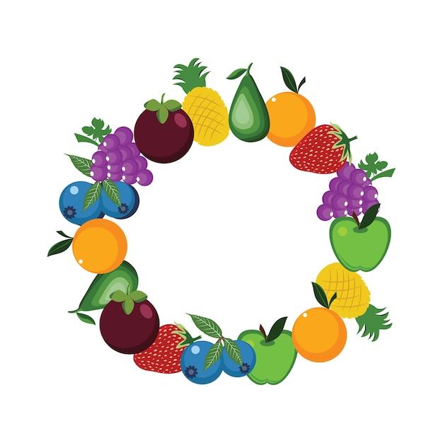 Illustration de cadre de cercle rond de fruits sains frais Vecteur Premium