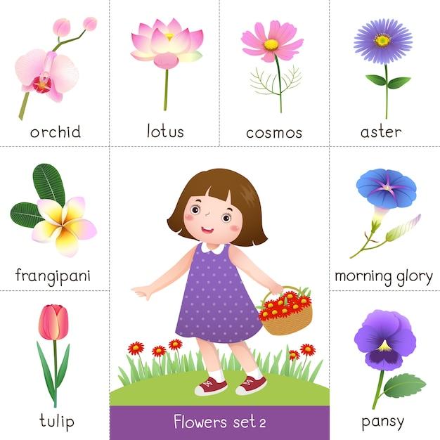 Illustration De La Carte Flash Imprimable Pour Les Fleurs Et La Petite Fille Cueillant Des Fleurs Vecteur Premium