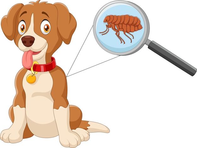 Illustration de chien infesté aux puces Vecteur Premium