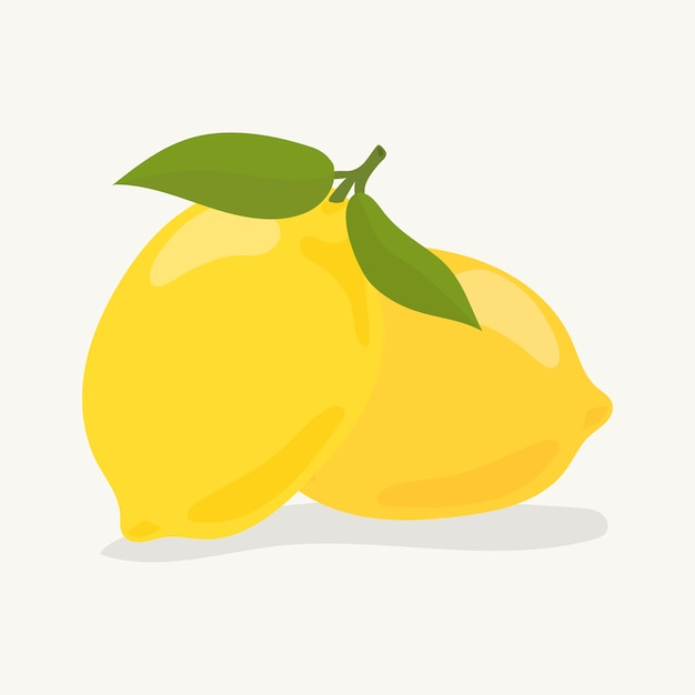 Illustration De Citron Coloré Dessiné à La Main Vecteur gratuit