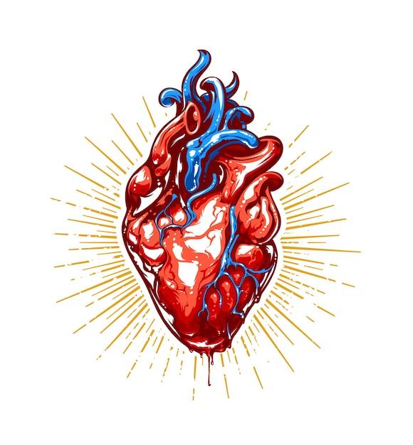 Illustration De Coeur Réaliste Vecteur gratuit