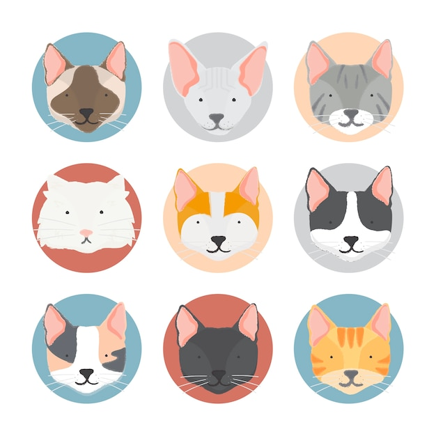 Illustration de la collection de chats Vecteur gratuit