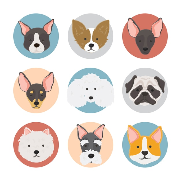 Illustration De La Collection De Chiens Vecteur gratuit