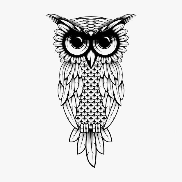 Illustration de conception vectorielle chouette Vecteur Premium