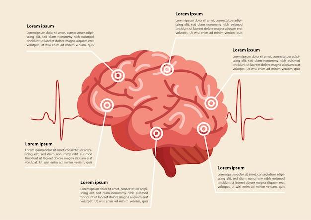 Illustration d'un coup de cerveau humain Vecteur Premium