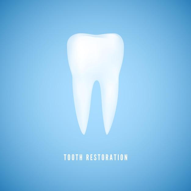 Illustration De Dent Réaliste Blanche. Effacer La Molaire De Santé. Dentiste Soins Et Fond De Médecine De Restauration Dentaire Sur Fond Bleu. Vecteur Premium