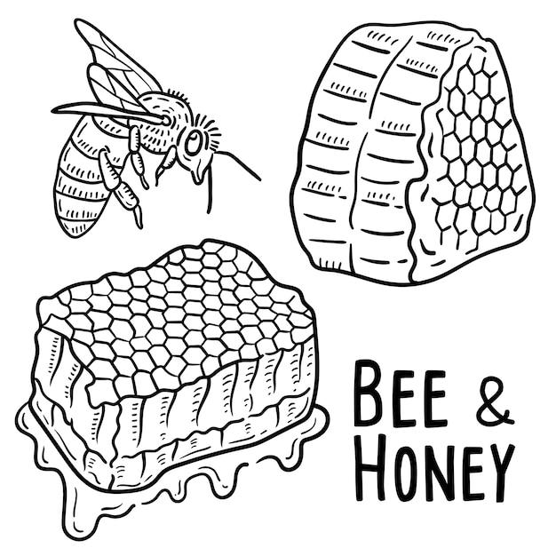 Illustration dessinée à la main de l'abeille et du miel. Vecteur Premium