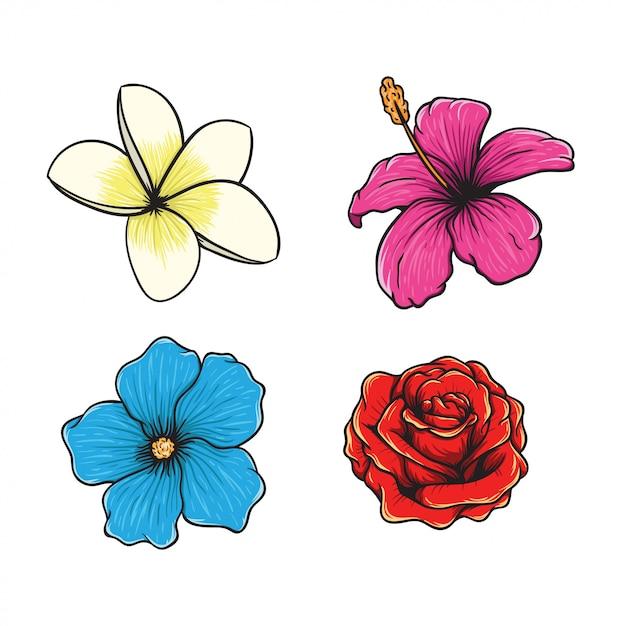 Illustration dessinée à la main du vecteur fleur tropicale Vecteur Premium