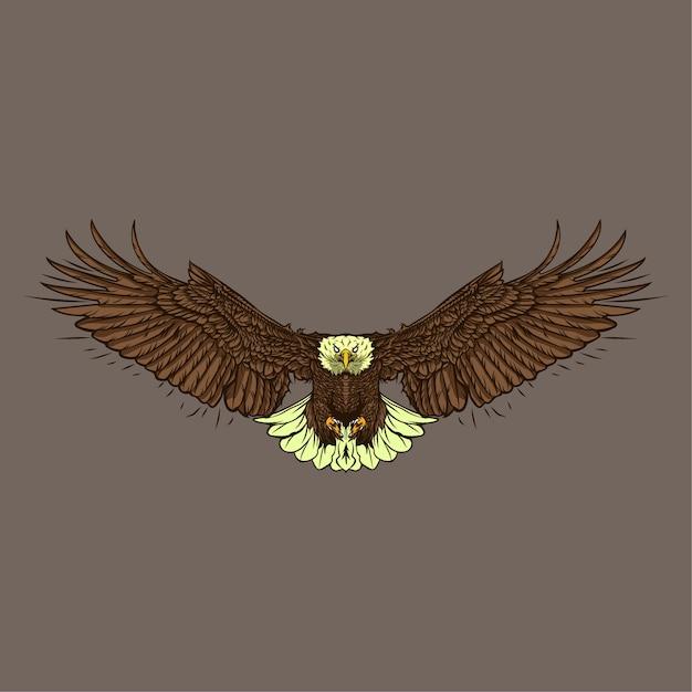 Illustration Dessinée à La Main Eagle Vecteur Premium