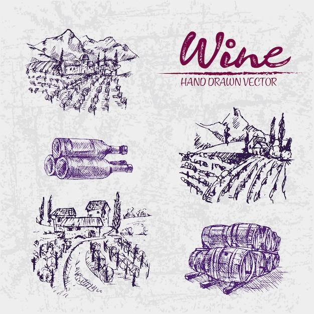 Illustration Détaillée De La Ligne Art Dessiné à La Main Pourpre Winery Vecteur Premium